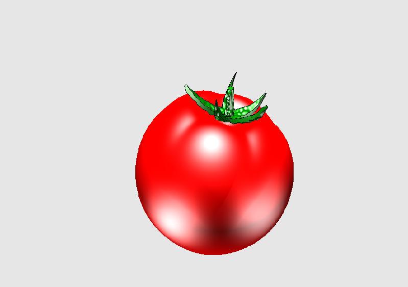 西红柿2.png